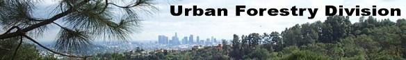 Urbanforestry